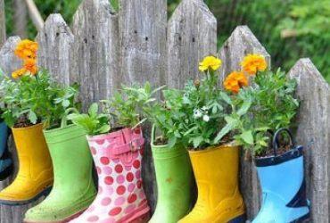 Plante, crie e recicle!