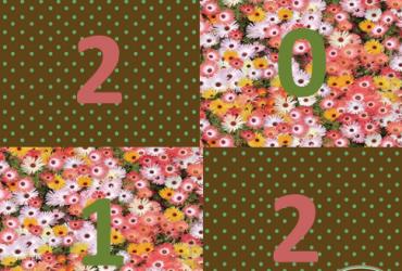 Retrô 2012: Um ano cheio de alegrias…