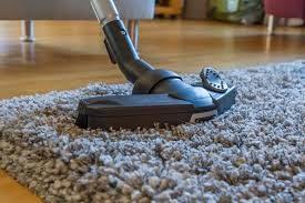 Casa saudável: Controlando a poeira e os pêlos de animais