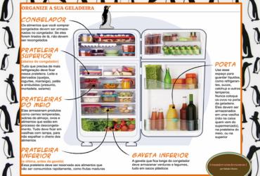 Esquema prático de organização da geladeira