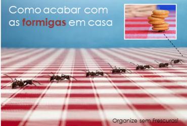 Como acabar com as formigas em casa