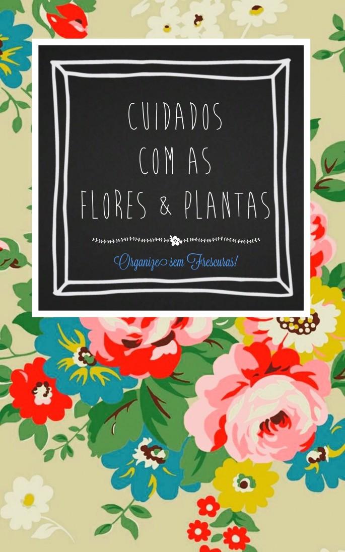 Cuidados com as plantas