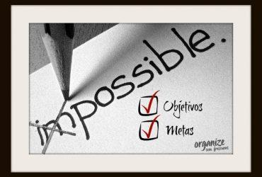 Estabeleça e Organize suas Metas e Objetivos   por Thais Godinho