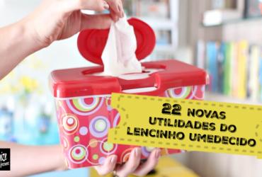 22 Novas Utilidades dos Lencinhos Umedecidos de Bebê