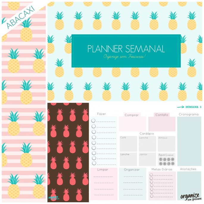 planner-abacaxi-blog