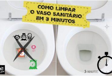Como limpar o vaso sanitário em apenas 3 minutos!